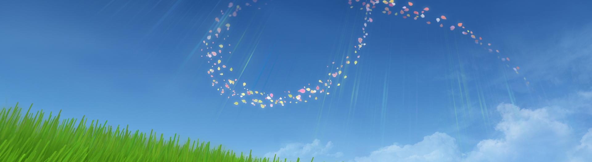 2435170-flower